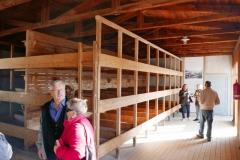 Dachau (38)